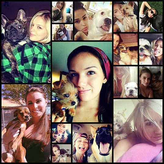 美女と野獣(犬)の写真(16枚)