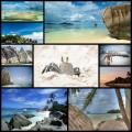 天国のように美しいアンス・スース・ダルジャンのビーチ(写真10枚)