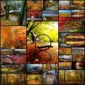 世界各地の秋らしい風景写真(29枚)