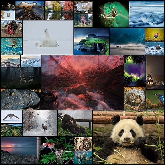 ナショナル ジオグラフィック9月の写真まとめ(33枚)