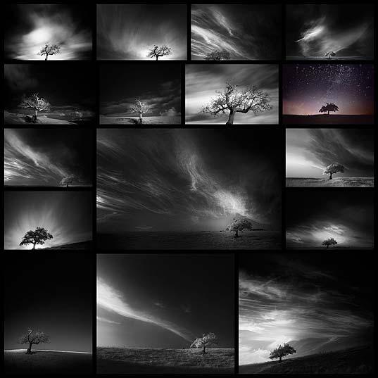 Andy Leeによる幻想的な白黒風景写真(16枚)