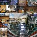 メキシコシティの現代建築(写真19枚)