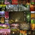 木や花で覆われた幻想的なトンネルの写真(30枚)