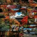 京都の紅葉撮って来たよー (写真100枚+)