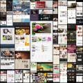 綺麗系Wordpressテーマ(40個)