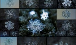 雪の結晶23