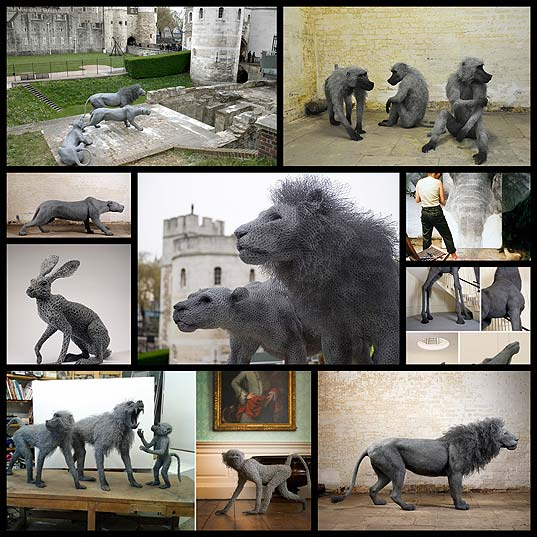 lifelike-galvanized-wire-animal-sculptures-by-kendra-haste10