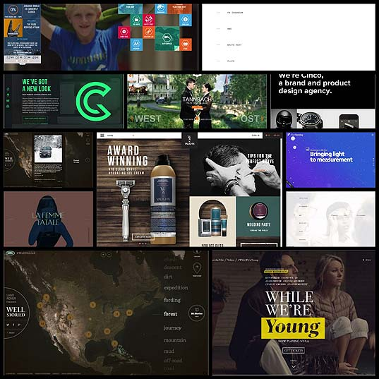 contrast-in-web-design12