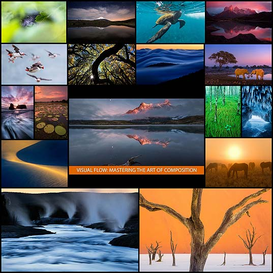 Visual-Flow-Mastering-the-Art-of-Composition-by-Ian-Plant---121Clicks