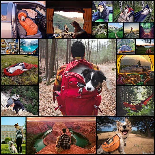 """Camping-With-Dogs""-Instagram-Will-Inspire-You-To-Go-Hiking-With-Your-Dog--Bored-Panda"