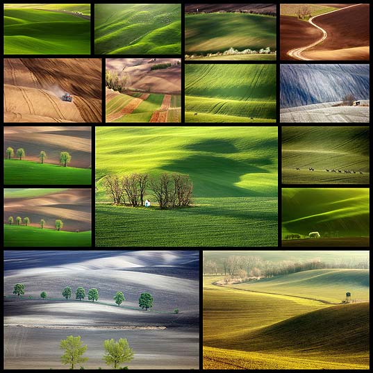 15Hypnotizing-Beauty-Of-Moravian-Fields-In-The-Czech-Republic--Bored-Panda