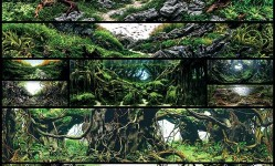 Awesome-Aquariums-Winners-of-the-2015-International-Aquatic-Plants-Layout-Contest--Colossal