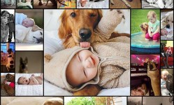 Dogs-and-Babies-(27-pics)
