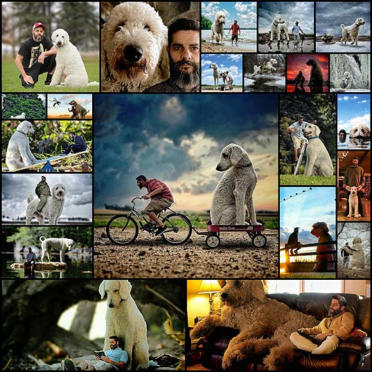 Imaginative-Photographer-Takes-His-Gigantic-Dog-on-Extraordinary-Adventures---My-Modern-Met