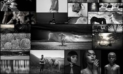 Monochrome-Awards-2015---Winners-Of-International-Black-&-White-Photography-Contest---121Clicks