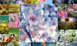 38-Stunningly-Gorgeous-Spring-Pictures