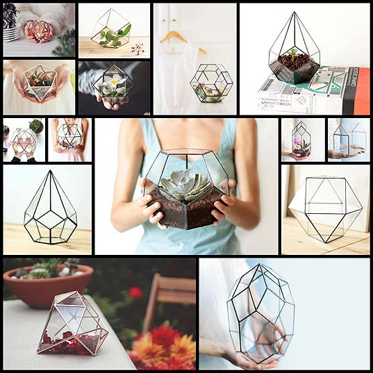 Geometric-Glass-Planters-Combine-an-Industrial-Aesthetic-with-Lush-Nature---My-Modern-Met