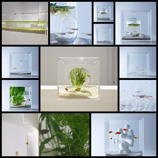 Minimalist-Aquariums-Filled-With-3D-Printed-Flora-by-Designer-Haruka-Misawa--Colossal