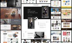 30-Premium-Responsive-Shopify-Themes---Web-Design-Ledger