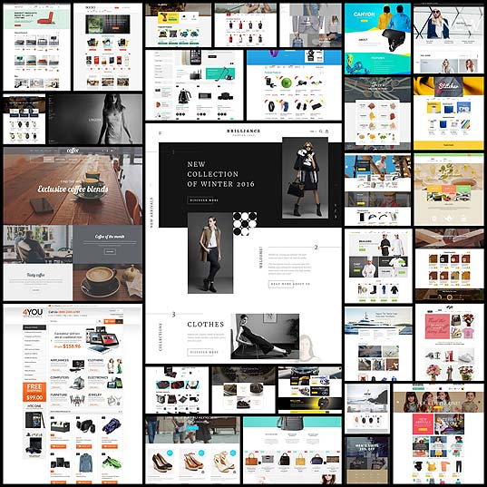30-Premium-Responsive-Shopify-Themes---Web-Design-Ledger