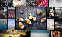 2016-iPhone-Photography-Award-Winners-Prove-Again-Amazing-Photos-Can-Be-Taken-Without-Expensive-Camera--Bored-Panda