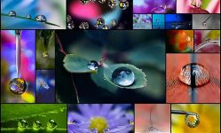 25-Fantastic-Examples-Of-Water-Drop-Photography--Photography--Design-Blog