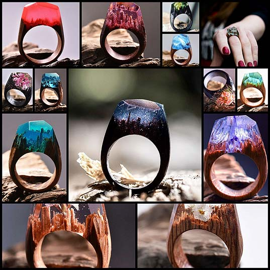 The-Different-Seasons-Are-Captured-Inside-These-Impressive-Wooden-Rings-(14-pics)
