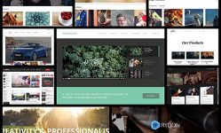 10-best-wordpress-video-themes-for-2016