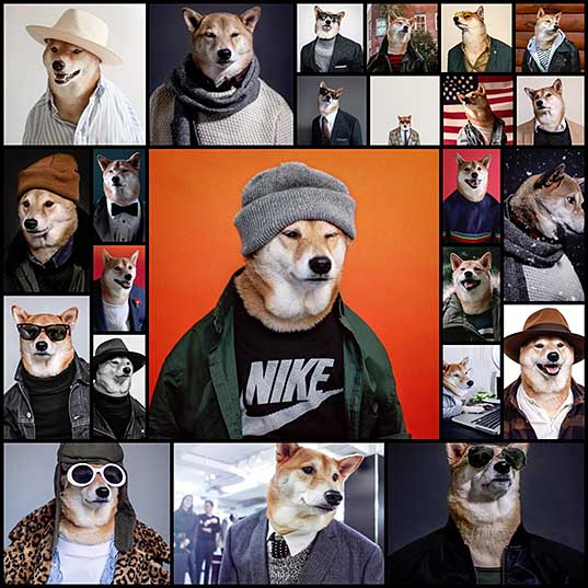 Dapper Dog Dressed in Human Clothes Is the Most Stylish Menswear Model - My Modern Met