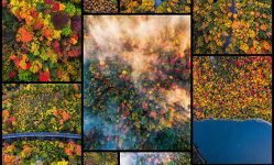 13-we-drove-through-every-state-in-northeast-us-to-photograph-the-beauty-of-fall-bored-panda