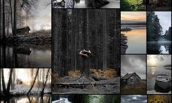 18-photographer-magnus-dovlind-captures-swedish-nature-as-a-therapy-121clicks