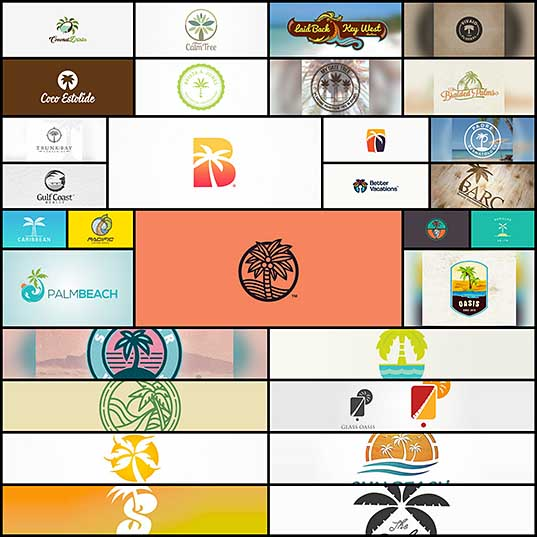 30 Creative Examples Of Palm Tree Logo Designs Naldz Graphics