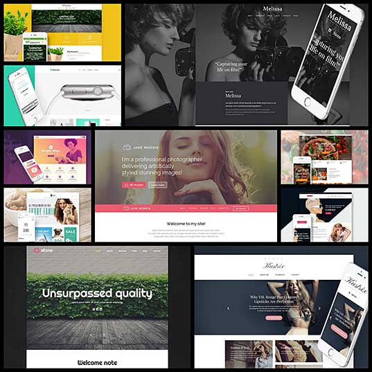 10 Best Free WordPress Themes on TemplateMonster's MarketPlace