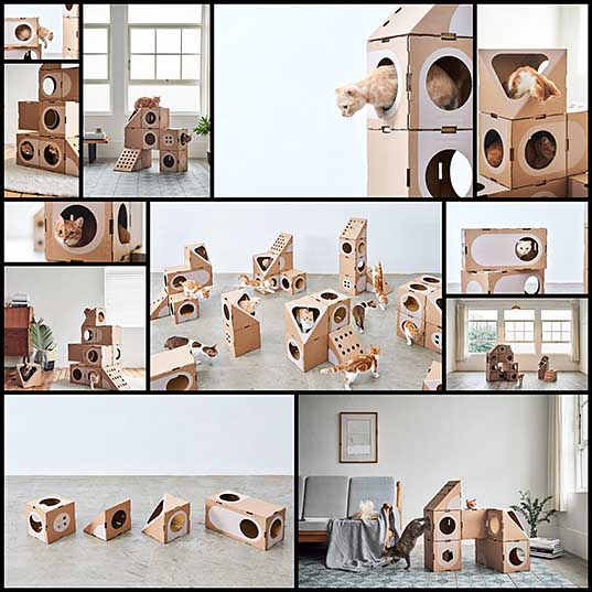 Modular Cardboard Cat Furniture is an Ever-Changing Playground