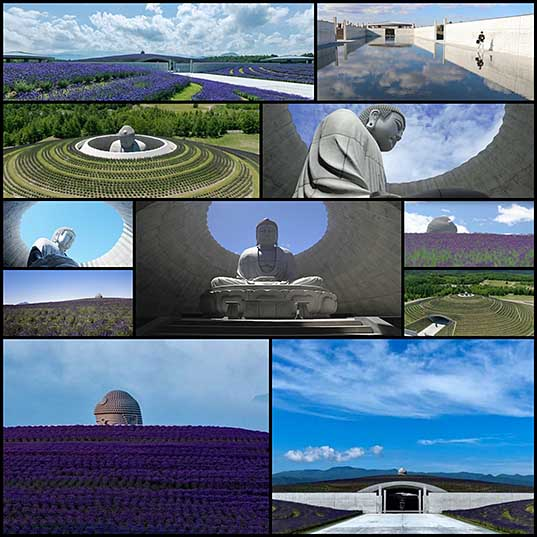 12 Giant Stone Buddha Enveloped by 150,000 Lavender Plants