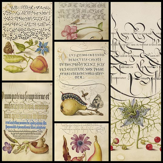 16th-Century-Calligraphy-Manual-Available-for-Free-Download