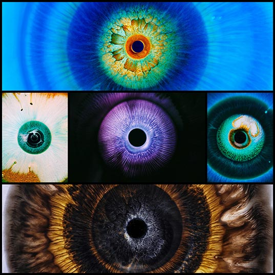 Bursts-of-Inky-Technicolor-Liquids-Mimic-Human-Eyes-in-a-Short-Film-About-Optical-Phenomena