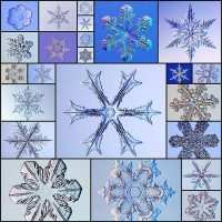 the_beauty_of_snowflakes_up_close_24_pics