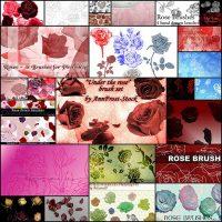 free-rose-brush-set26