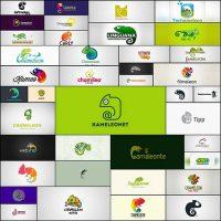 chameleon-logo-design40