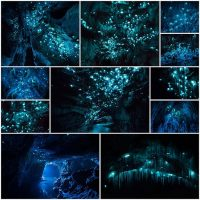 Удивительная-подборка-фотографий,-сделанных-в-пещере-Новой-Зеландии